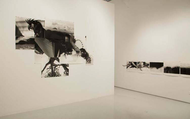Birdhead,Welcome to Birdhead World Again, 2016, Exhibition view. Images courtesy of ShanghART, Singapore.