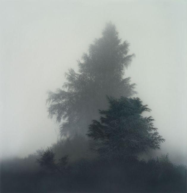 The symptom of depthless space by Kibong Rhee contemporary artwork