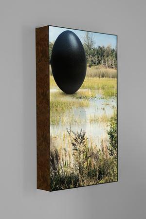 Everglades Egret by Rachel Rose contemporary artwork sculpture, moving image