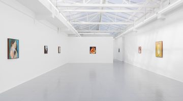 Contemporary art exhibition, Thomas Lerooy, If you feel more than butterflies in your stomach at rodolphe janssen, Brussels, Belgium