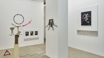 Contemporary art exhibition, Tong Kunniao, When Dog's Mouth Spits Ivory at SETAREH, SETAREH X, Germany