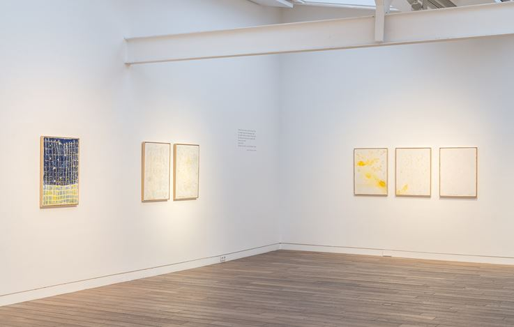 Exhibition view: Pier Paolo Calzolari, Muitos estudos para uma casa de limão, Beck & Eggeling International Fine Art, Düsseldorf (17 January–29 February).  Courtesy Beck & Eggeling International Fine Art.