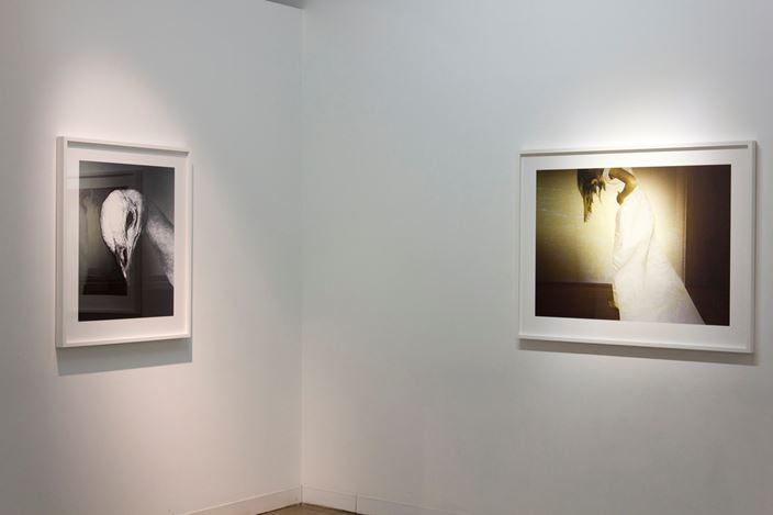 Exhibition view: Pat Brassington, Nonetheless, Arc One Gallery (26 June–28 July 2018). Courtesy Arc One Gallery.