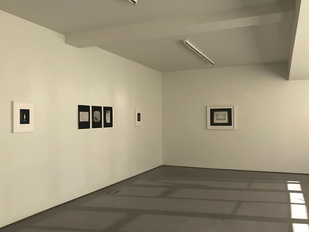 Exhibition view: Marie Shannon, Hamish McKay (24 May–22 June 2019). Courtesy Hamish McKay.