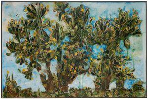 Barbary Fig by Ugo Schildge contemporary artwork