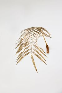 Hole in Palm Leaves by Gunwoo Shin contemporary artwork sculpture