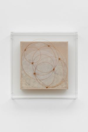Piumario (Feather box) by Mariella Bettineschi contemporary artwork