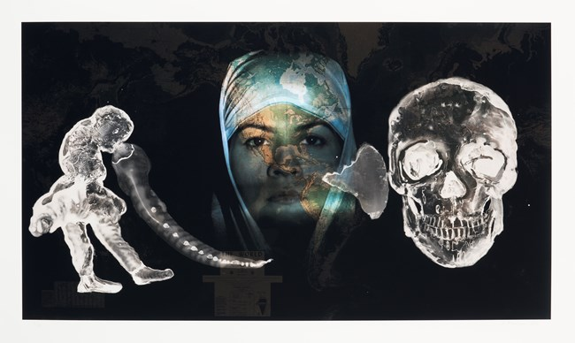 When the living can no longer fight - the dead will by Nalini Malani contemporary artwork