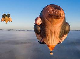 Patricia Piccinini's Skywhalepapa Breaches Heavens