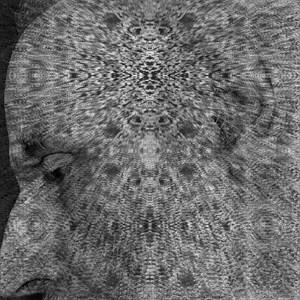 NO NAME 26 (Screens) by Lucas Samaras contemporary artwork