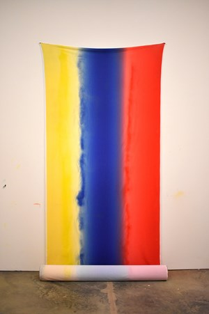 Wall bones: I am afraid of red yellow blue by Polly Apfelbaum contemporary artwork