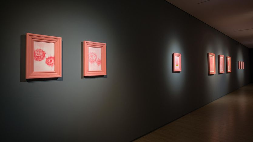 Exhibition view: Zhao Zhao, Pink 粉色,Lin & Lin Gallery, Taipei(8 May–19 June 2020). Courtesy Lin & Lin Gallery.