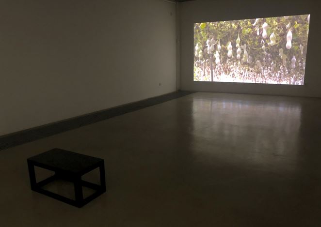 Exhibition view: Group Exhibition, Nature as Measure, Chambers Fine Art, Beijing (21 September–27 October 2019). Courtesy Chambers Fine Art.