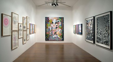 Contemporary art exhibition, Del Kathryn Barton, Electric orchid at Roslyn Oxley9 Gallery, Sydney