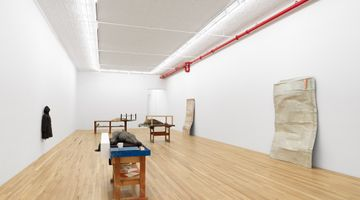 Contemporary art exhibition, Liz Magor, I Have Wasted My Life at Andrew Kreps Gallery, 22 Cortlandt Alley, USA