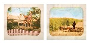 Plantation (Diptych No. 5) by Tracey Moffatt contemporary artwork
