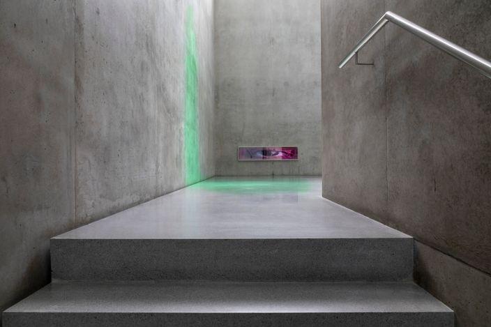 Exhibition view: Pamela Rosenkranz, House of Meme, Kunsthaus Bregenz (17 April–4 July 2021).Courtesy Sprüth Magers. Photo: Markus Tretter.
