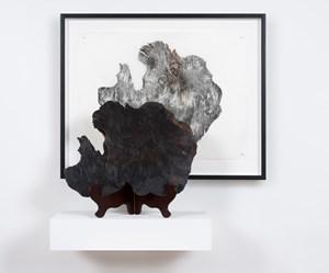 Doppelgänger, Lake Pedder by John Wolseley contemporary artwork