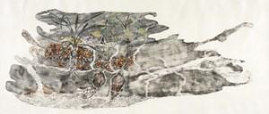 Dhunguruk, Butjuwutju/Mona and Djitama - edible tubers of East Arnhem Land by John Wolseley contemporary artwork