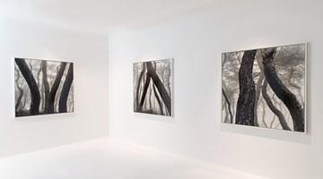 Contemporary art exhibition, Bae Bien-U, 分合 PART: MEET at Axel Vervoordt Gallery, Coda Designer Centre, Hong Kong, SAR, China