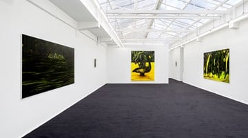 Contemporary art exhibition, Douglas Eynon, Permanent Guest Host at rodolphe janssen, Brussels