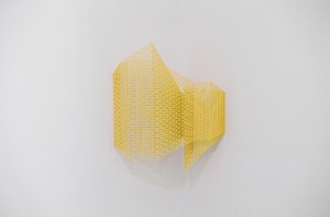 ectype by Suh Haiyoung contemporary artwork