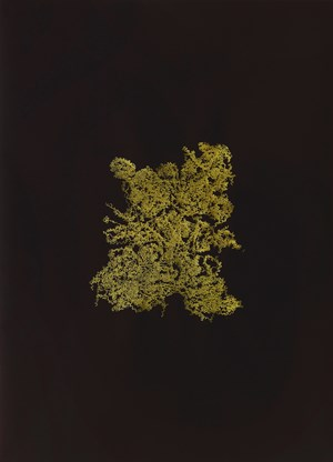 Golden Singular – Instant Noodle Natural by Haegue Yang contemporary artwork