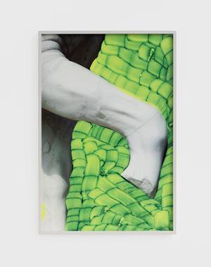 The Old Centaur by Viviane Sassen contemporary artwork