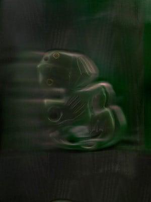 A69170 by Fiona Pardington contemporary artwork
