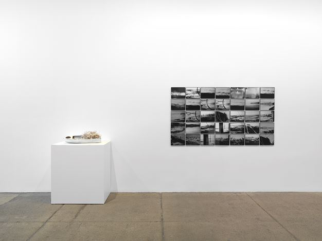 Exhibition view: Group Exhibition, Rhe: everything flows;, Galerie Lelong & Co., New York (7 January–13 February 2021).  Courtesy Galerie Lelong & Co., New York.