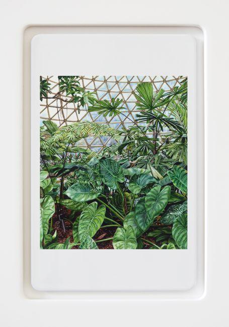 Biopod #3 by Natasha Bieniek contemporary artwork