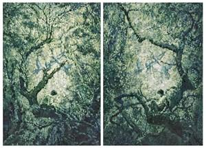 Chiaro / Scuro by Huang Ko Wei contemporary artwork