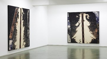 Contemporary art exhibition, Sterling Ruby, BC RIPS at Taka Ishii Gallery, Complex665, Tokyo