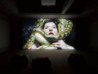 Contemporary art exhibition, Marina Abramović, Seven Deaths at Lisson Gallery, Lisson Street, London, United Kingdom