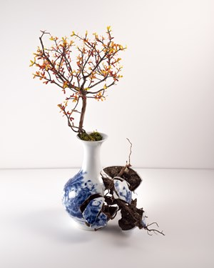 Vase I by Émeric Chantier contemporary artwork