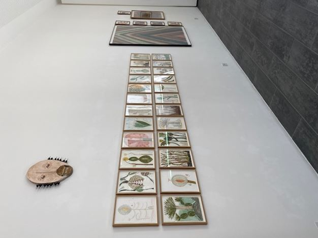 Exhibition view: Group Exhibition, DRAWING NOW @ FIFTY ONE TOO, Gallery FIFTY ONE TOO, Antwerp (20 May–17 July 2020). Courtesy Gallery FIFTY ONE.