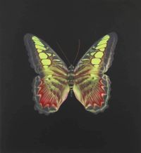 The Souls on Jacob's Ladder No. 2 by Damien Hirst contemporary artwork painting, works on paper, drawing