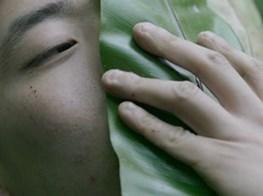 Environmental issues grow on the Taipei Biennial