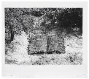 Book-Field by Mirella Bentivoglio contemporary artwork