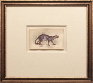 Felis Nepalensis:Nepaul Cat by Kalim Yoon contemporary artwork textile
