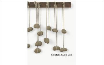Seung-taek Lee