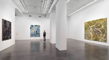 Contemporary art exhibition, Zhang Enli, New Paintings at Hauser & Wirth, Zurich