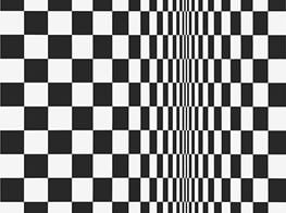 Bridget Riley's Razzle-Dazzle Career