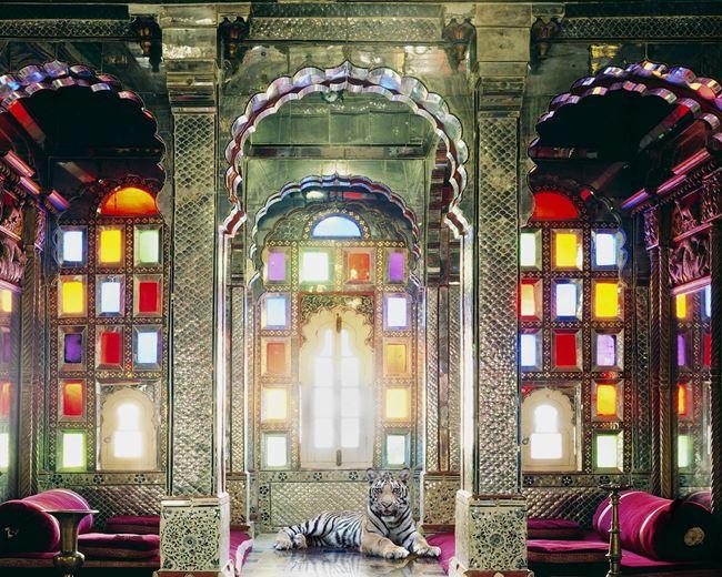 The Survivor, Deogarh Palace, Deogarh by Karen Knorr contemporary artwork
