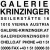 Galerie Krinzinger Advert