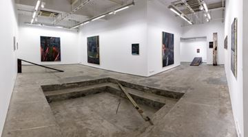 Contemporary art exhibition, Biraaj Dodiya, Stone is a Forehead at Experimenter, Hindustan Road, Kolkata