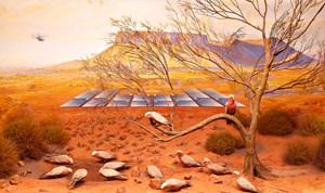 Galah, Mt Connor near Uluru, South Australia by Anne Zahalka contemporary artwork