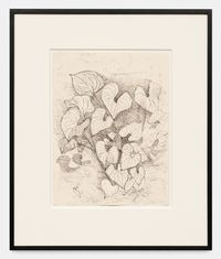 Leaves by Alice Neel contemporary artwork works on paper, drawing