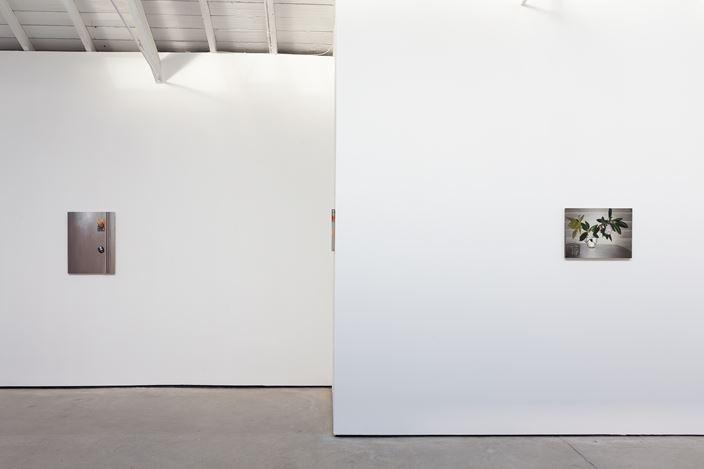 Exhibition view: Dike Blair, The Modern Institute,Osborne Street, Glasgow (16 November 2019–22 February 2020). Courtesy the Artist and The Modern Institute/Toby Webster Ltd, Glasgow. Photo: Patrick Jameson.