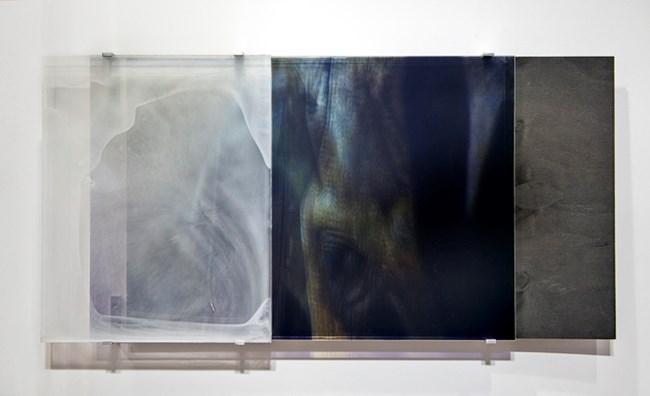 Vanishing Series/Yearning IX by Janet Laurence contemporary artwork
